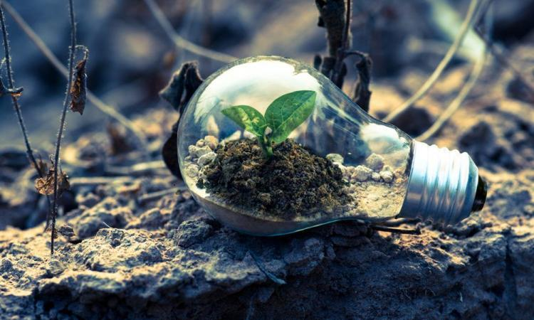 L'énergie verte en 5 questions essentielles