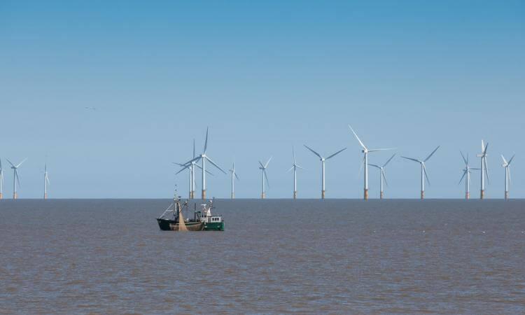 La Belgique produit de plus en plus d'énergie éolienne