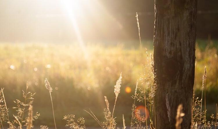 Le printemps ensoleillé allège-t-il notre facture énergétique?